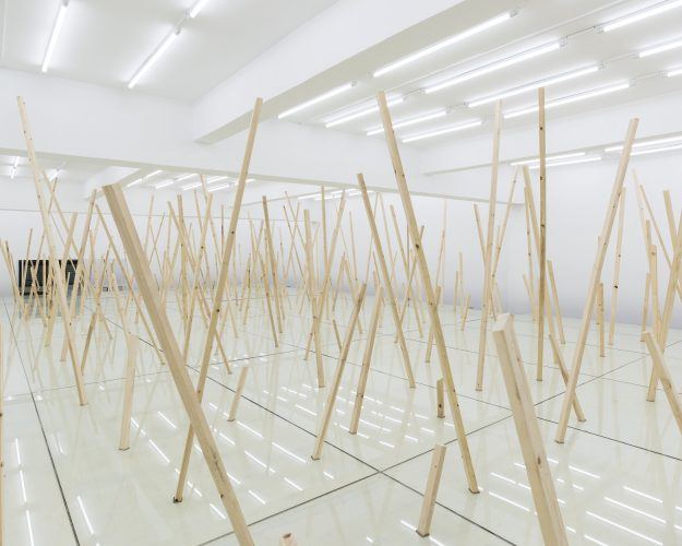 "Artist | Liao Fei's Solo Exhibition ""Plain"" will open in Shanghai Museum of Glass on Novemeber 9th"