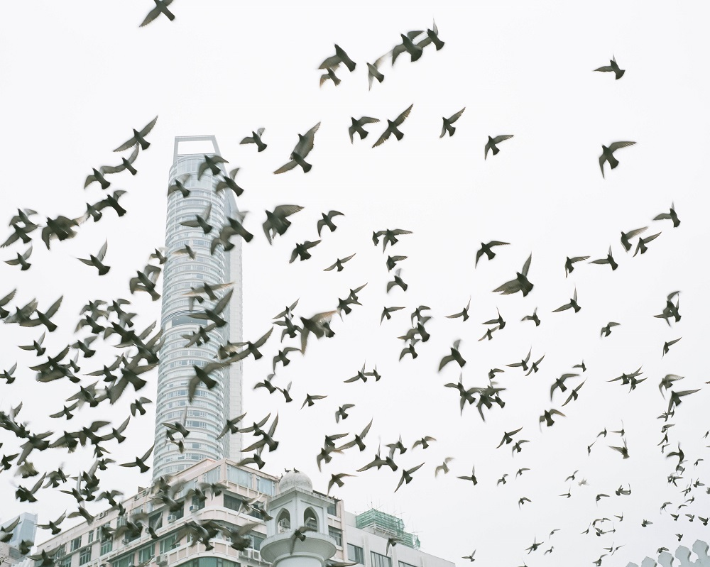 "Lam Pok Yin ""A City of 7 Million NO.6"", Photograph, 96×120cm/40×50cm, 2012"