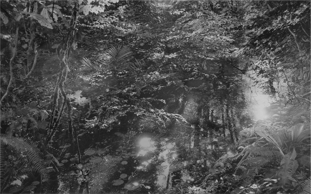 """Aki Lumi """"The Garden No.2"""", photograph gelatin-silver print, 125 x 195 cm, 2005"""