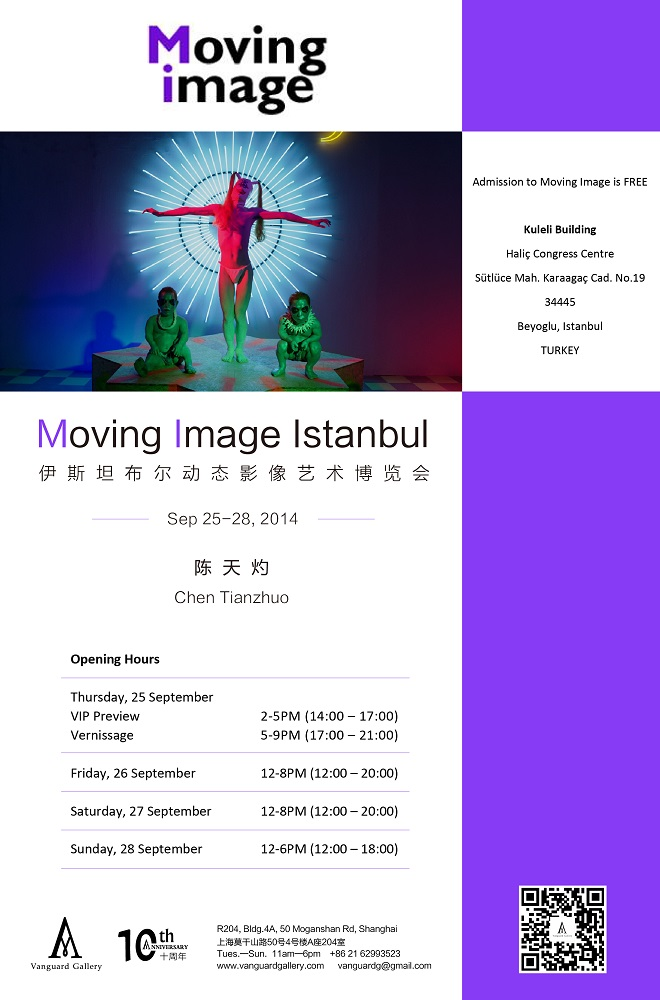 Artist丨Chen Tianzhuo participated in 2014 Moving Image Istanbul
