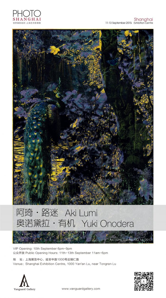 Art Fair | Vanguard Gallery @2015 Photo Shanghai