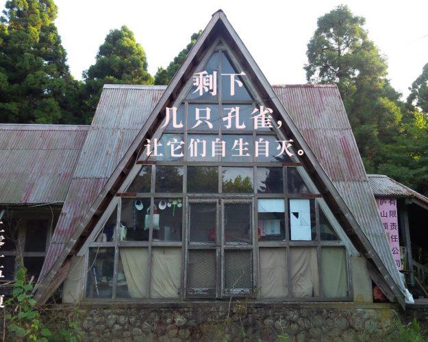 艺术家 |童义欣 参展UCCA群展 【紧急中的沉思】